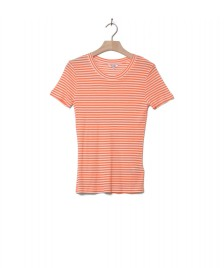MbyM MbyM W T-Shirt Samira orange sunkissed sugar stripe
