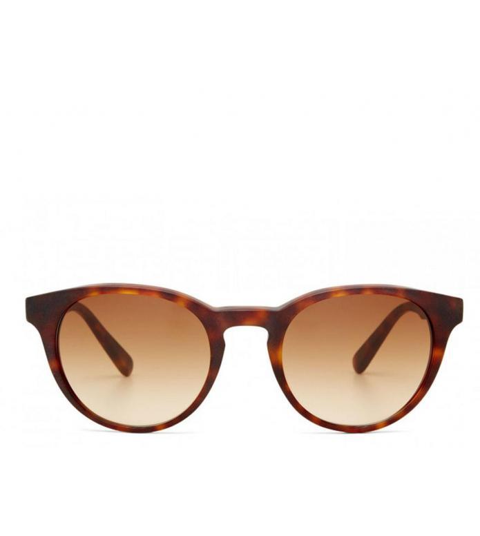 Viu Viu Sunglasses Pleasant tortoise matt